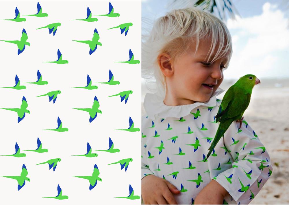 waddler parrots.jpg