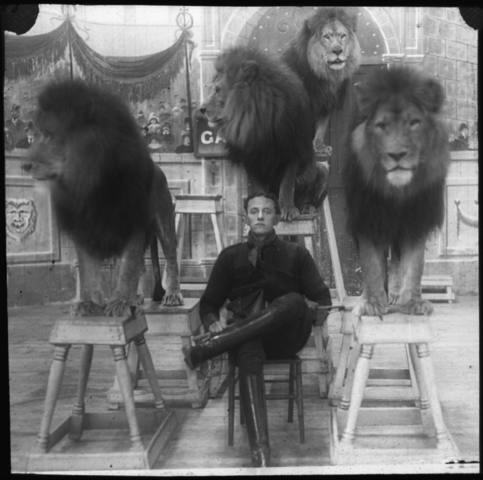 I do not believe these looks are truly tamed compendium-of-beasts: Lion tamer