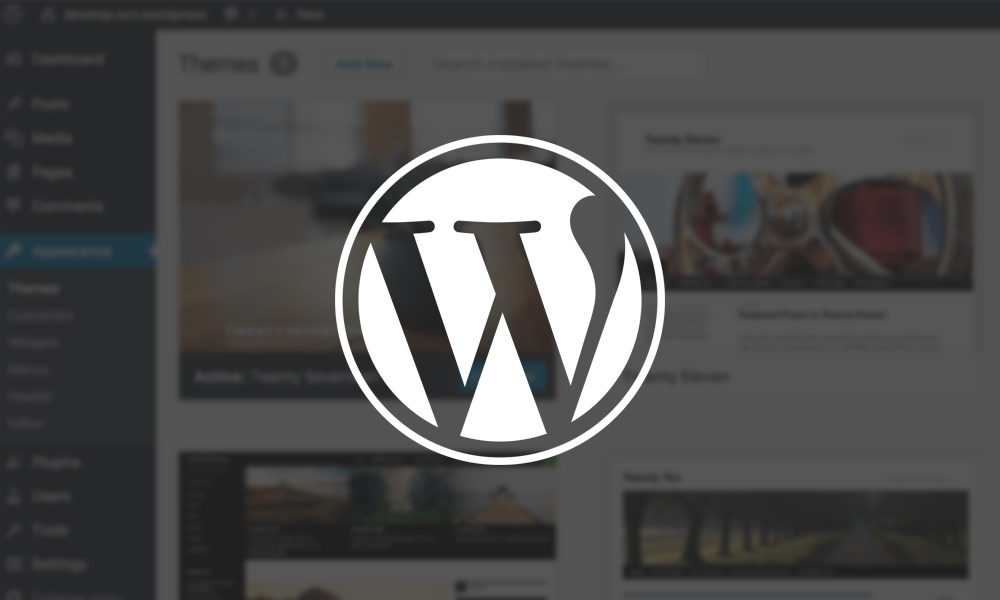 Wordpress - Want a modern, functional yet easy to edit Website? We offer Websites based on the WordPress CMS, with a drag and drop builder so you can make changes anytime, without a single line of code.