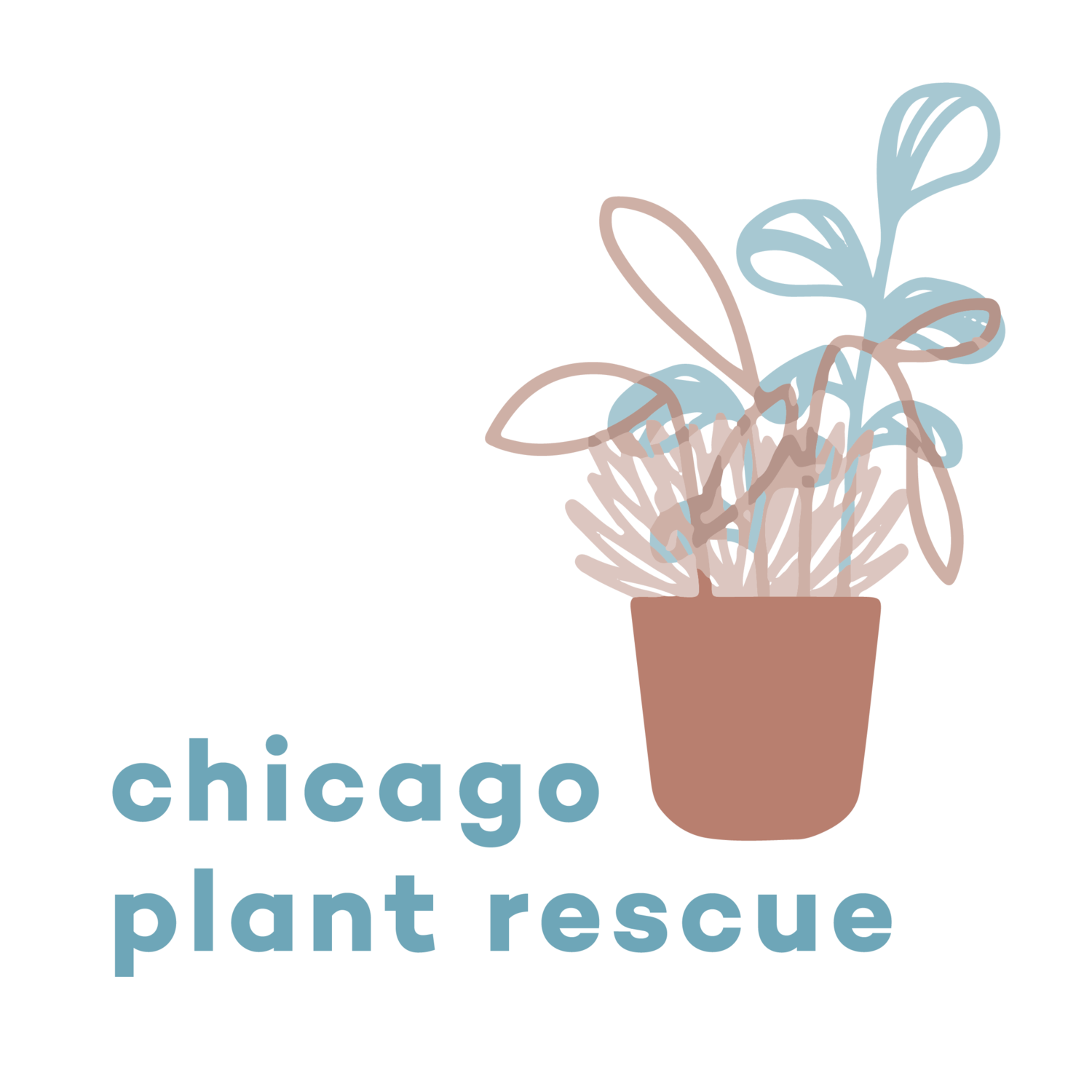 Chicago Plant Rescue