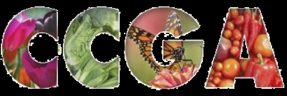 CCGA 3.5x7.png