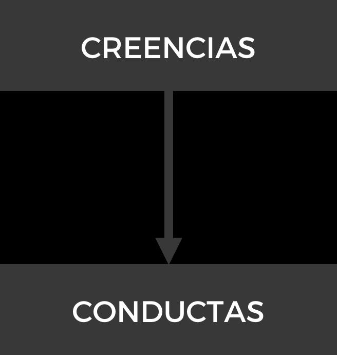 Creencias y Conductas.jpg