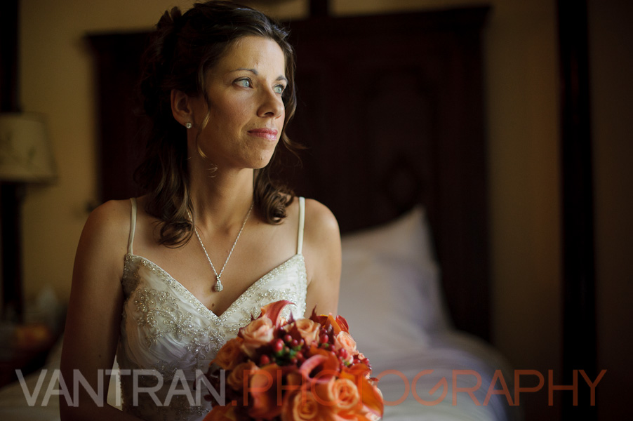 bride portrait ottawa wedding