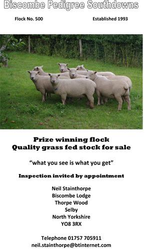 Biscombe-Flock.jpg