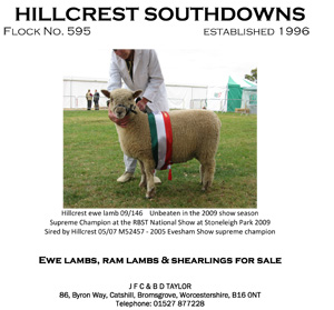 Hillcrest-Flock.jpg