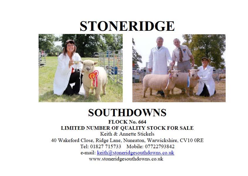 Stoneridge.jpg