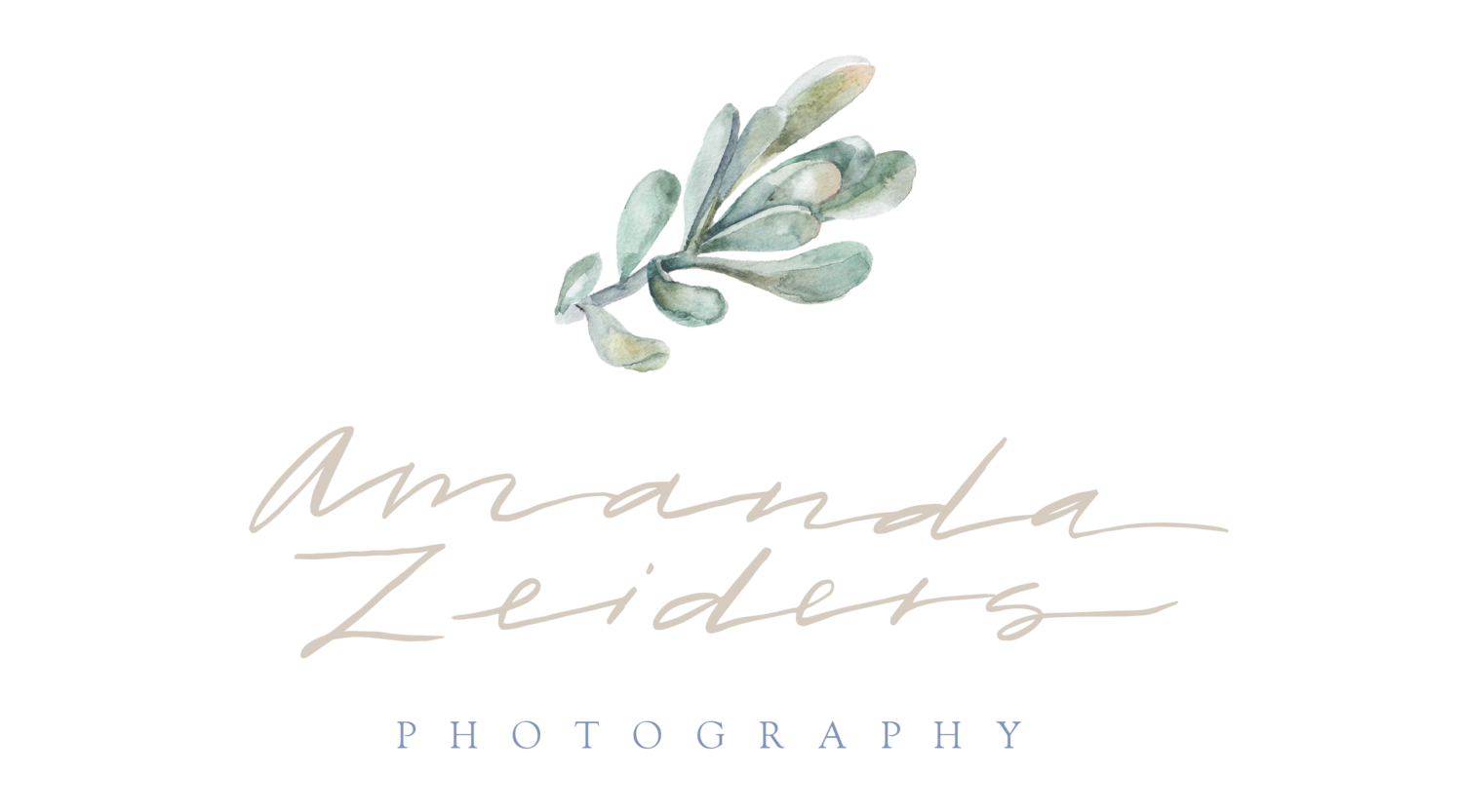 Amanda Zeiders: Central PA Wedding and Portrait Photographer