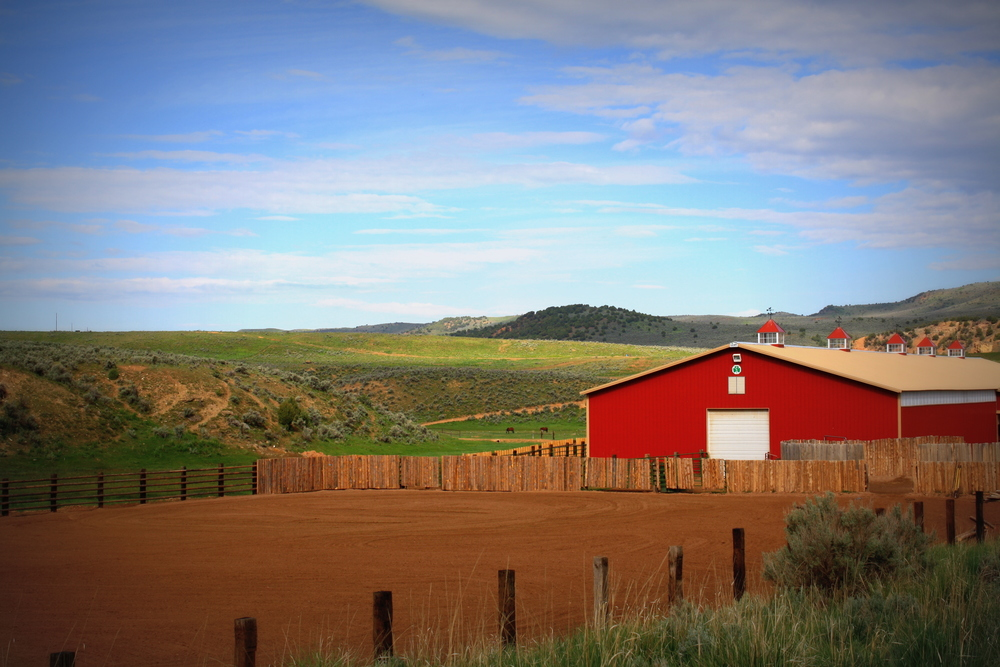 barn & outdoor arena.jpg