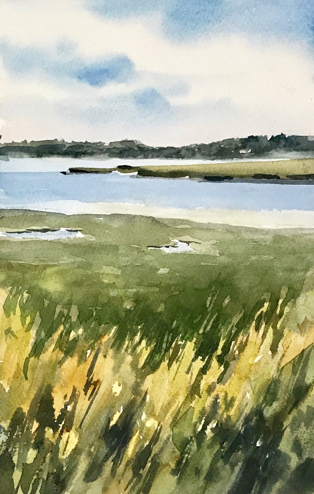 For my second painting, I moved just a few feet away and changed my format from a panoramic to a vertical emphasis. The marsh grasses seemed to be on fire and sparkled against the blue water