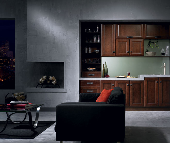 maple_cabinets_in_contemporary_bar_area.jpg