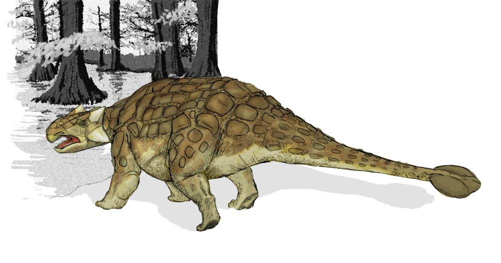 Lefty the Anklosaurus is ashamed.