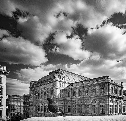 Sommer Fotoakademie Wien