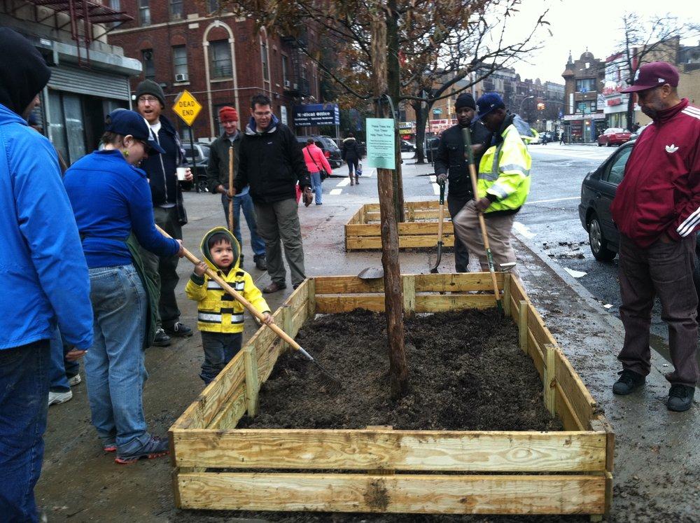 Street tree planter install.