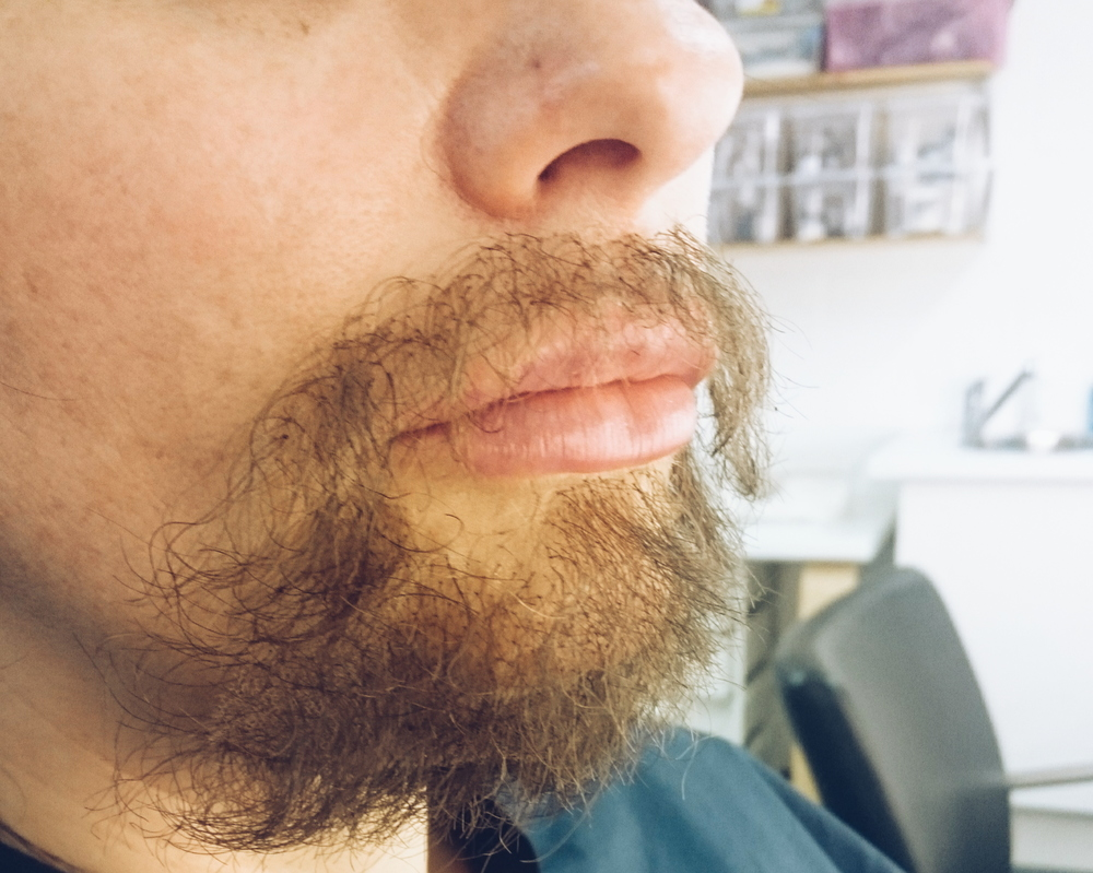 False Beard Application