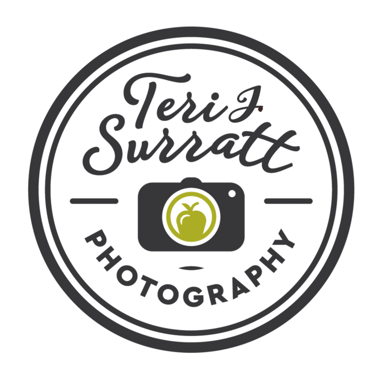 Teri J Surratt Photography