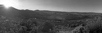 dromer landscape.png