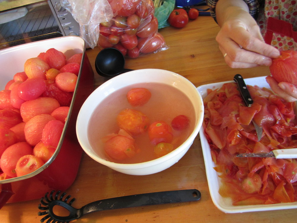 8b whole tomatoes ready for canning.JPG