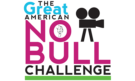 T&R Solutions: Define. Design. Progress. Portfolio Project: The Great American NO BULL Challenge Non-Profit Group