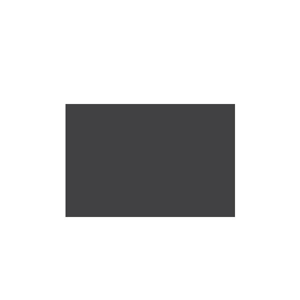 SkollFoundation.png