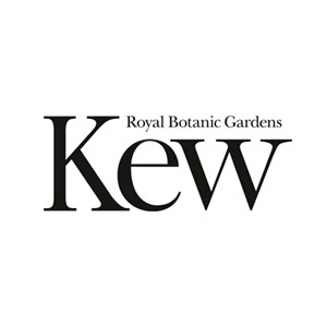 kew-foundation.jpg