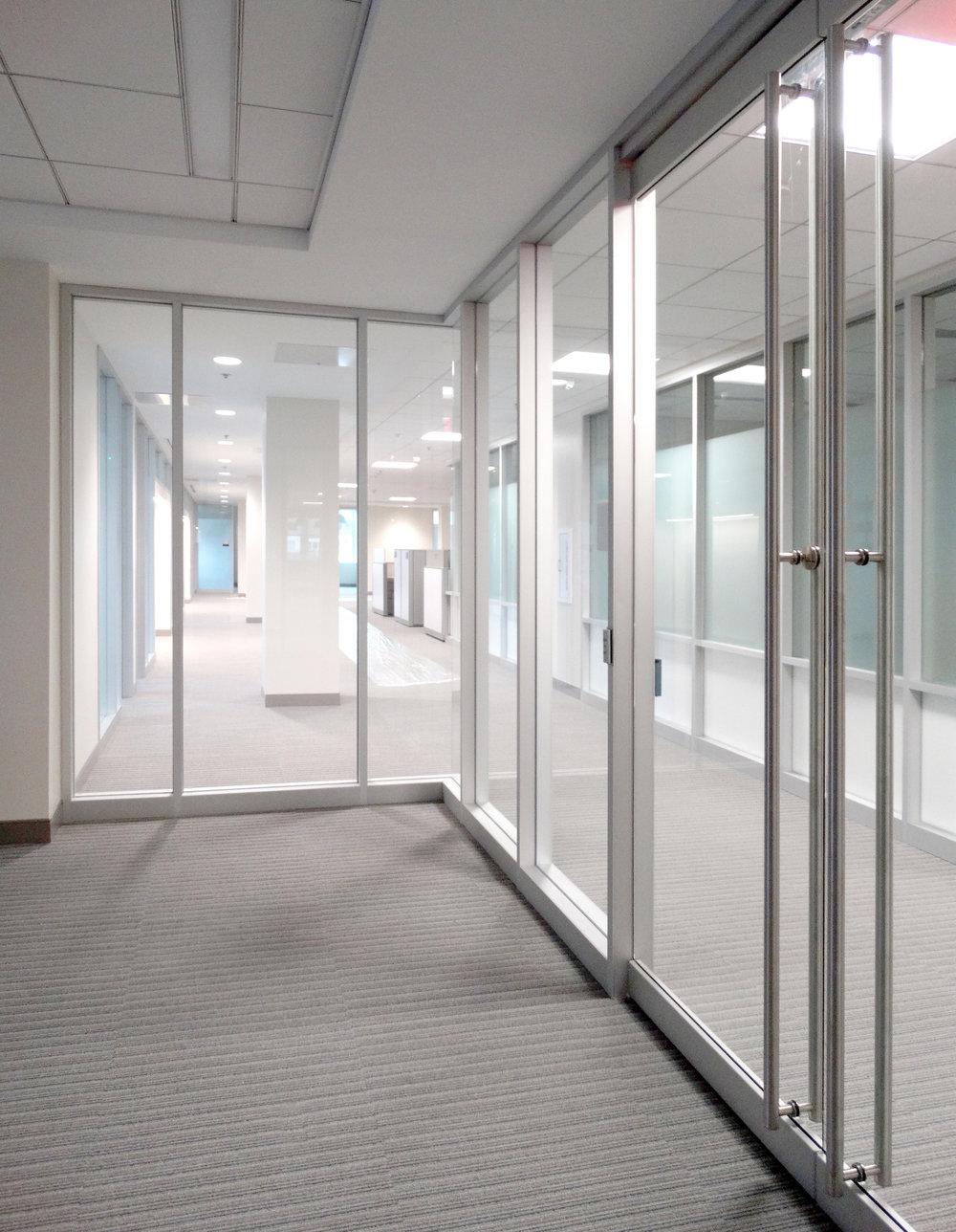 Encase Aluminum Framed Vertical Mullion Frameless Swing Doors - Spaceworks AI.jpg