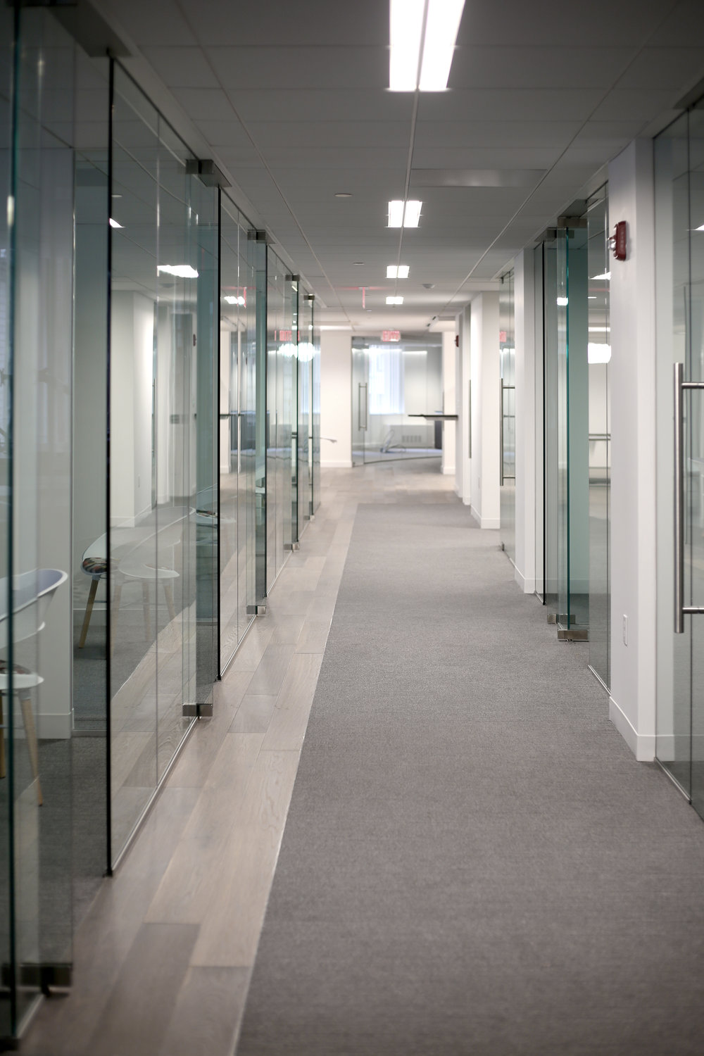 Illume Frameless Glass Office Doors - Spaceworks AI.jpg