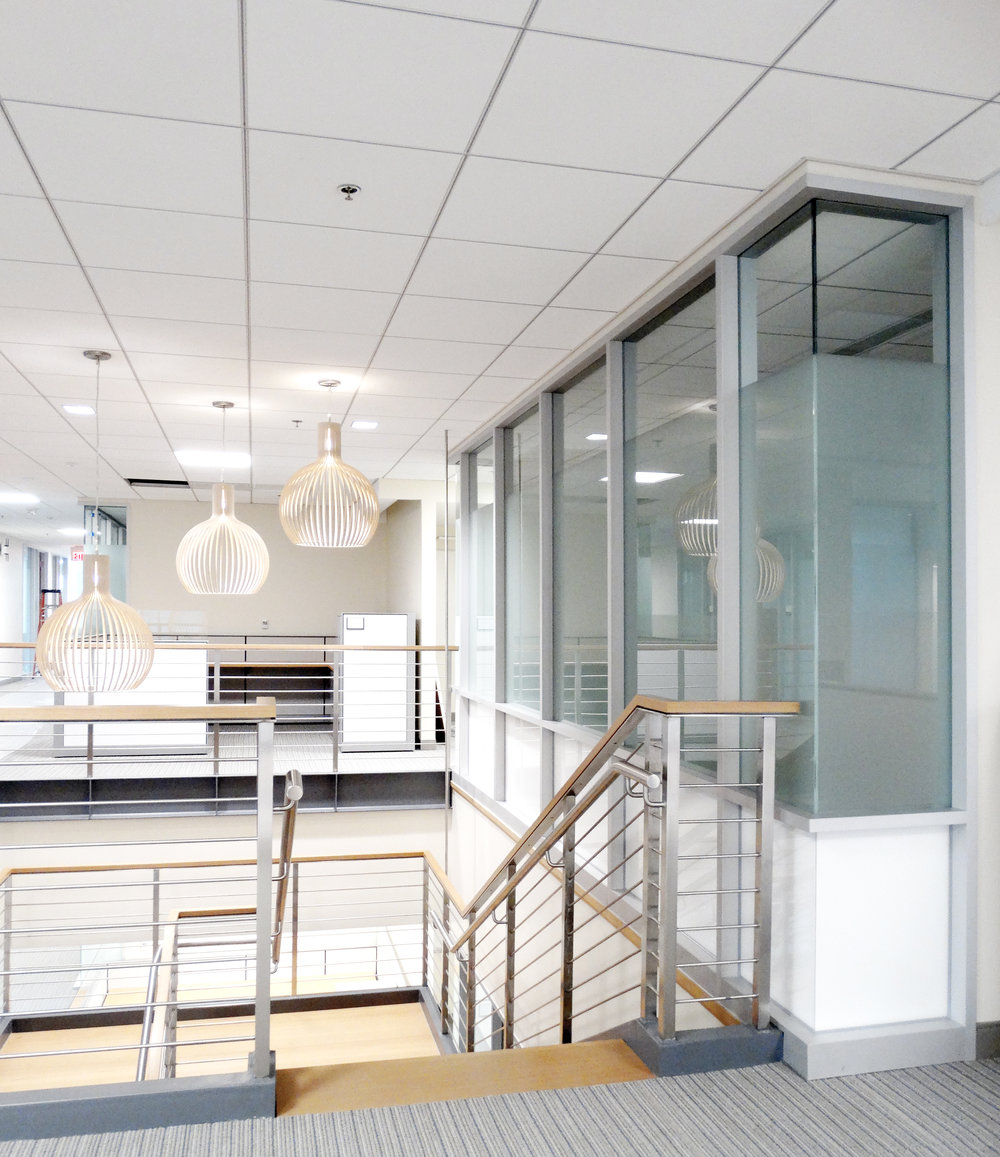 Encase Aluminum Framed Specialty Glass Wall System - Spaceworks AI.jpg