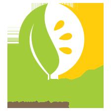 mollys-logo.png