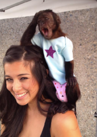 On Set with the Hangover 2 Monkey for Feature Film, Gibby (2016)