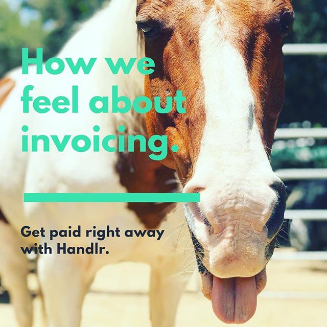 Do you give horseback riding lessons? Tennis lessons? Piano lessons? Then you know how difficult it can be to keep up on getting paid. Using Handlr, your clients can book open spots in your schedule, save their credit card info to their app, and rate your team members. It's kind of like OpenTable meets Lyft for running your mobile service business! #horsetrainer #horselessons #tennisinstructor #tennislessons #dogtrainer #pianoinstructor #tutor #guitarlessons #businesssoftware #businessapp #scheduling