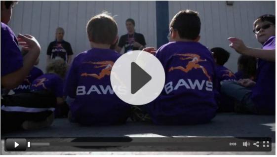 BAWSI Video