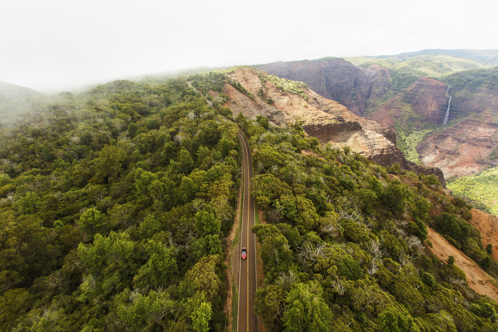 Aerial Shot of Waimea Canyon