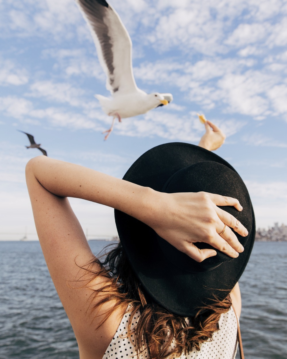 A bird eating out of the hand of the girl with the hat