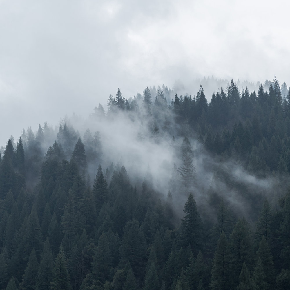 Mt Shasta-199.jpg