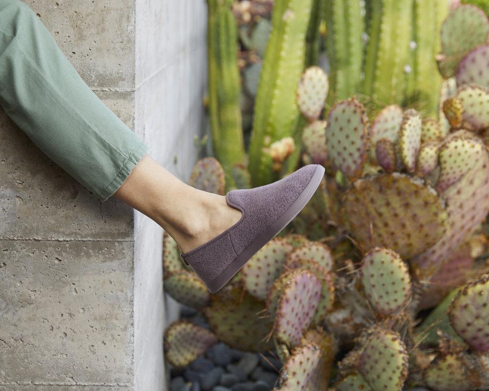 12_Cactus_Corner_W_Lounger_Plum_0122.jpg
