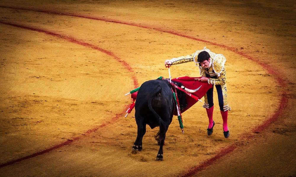 bull_fight_spain.jpg