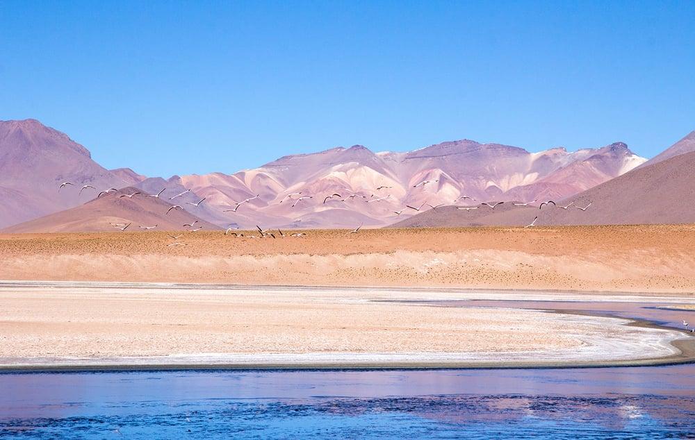 South_bolivia.jpg