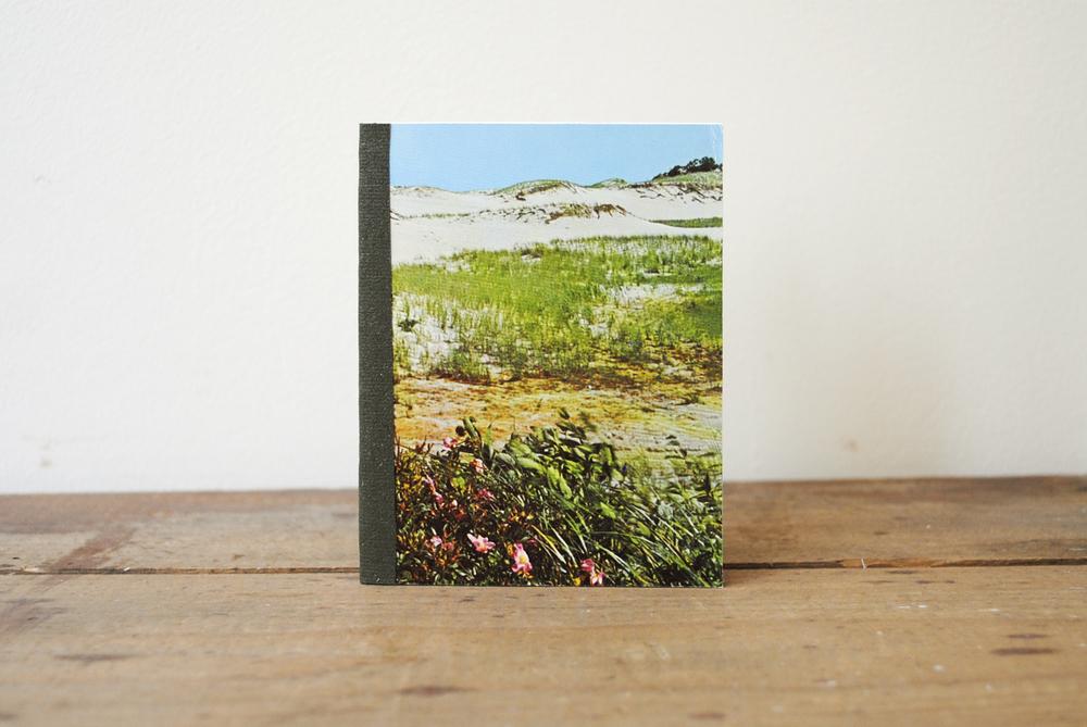 postcard-a-dunes.jpg