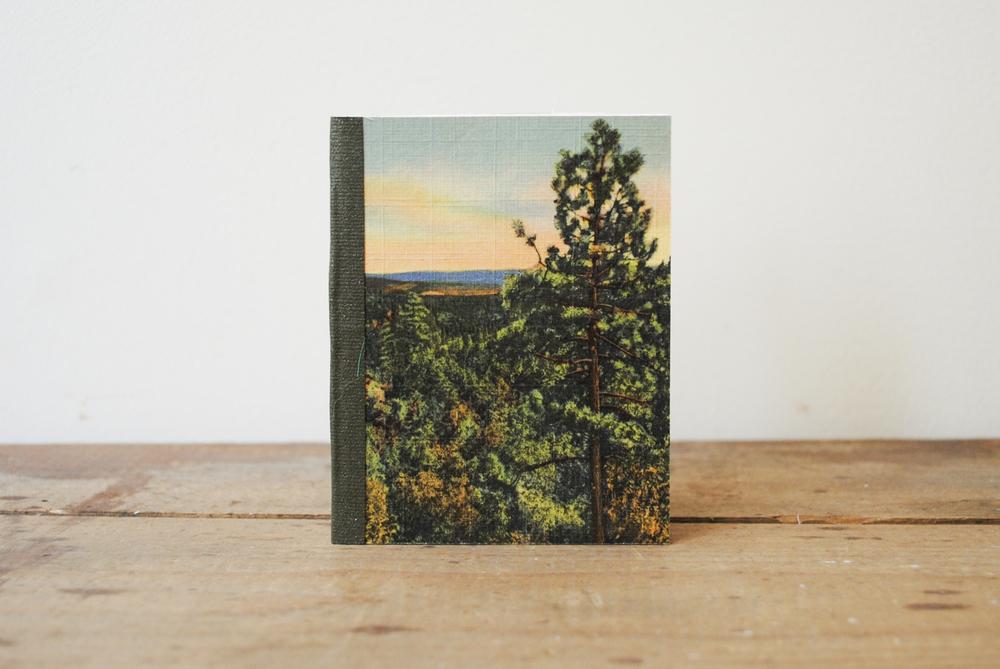 postcard-d-trees.jpg