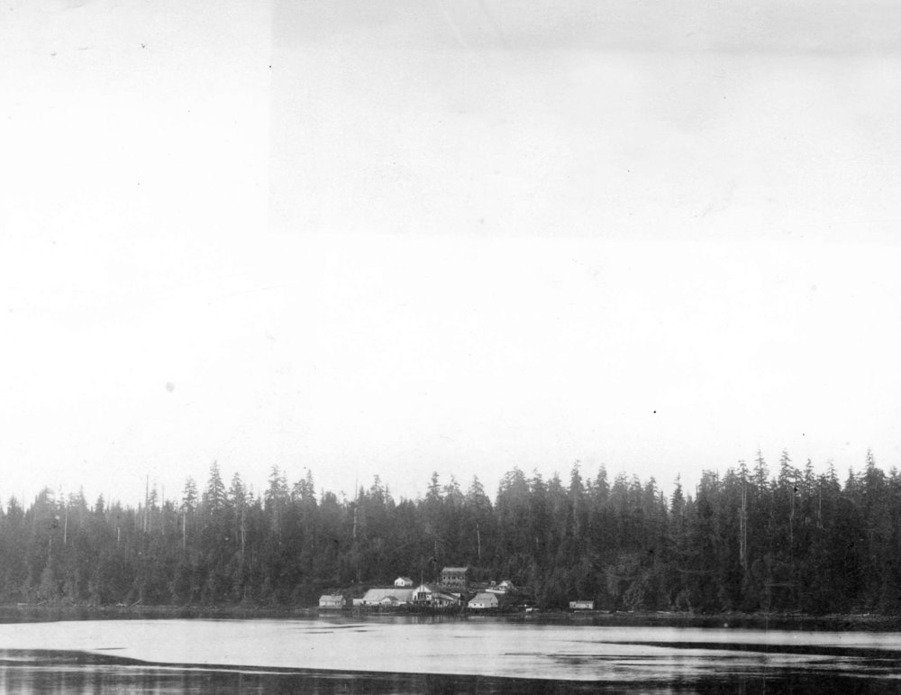 The Coal Harbour shore in 1884, showing Spratt's Oilery amid the thick forest that is now downtown Vancouver. Source: The City of Vancouver Archives Reference Code: AM54-S4-: Bu P42 Item : Bu P42 - Sprat[t]'s Fishery Coal Harbour