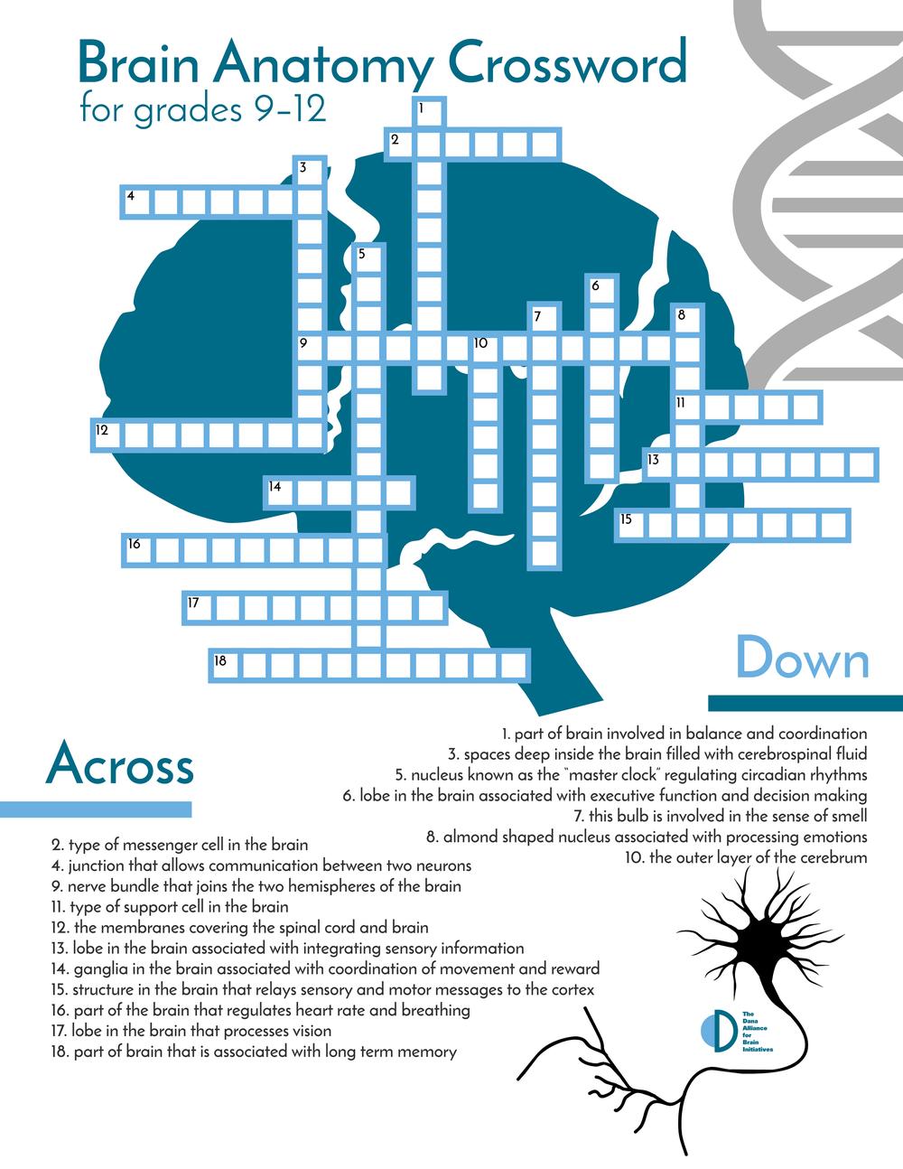 High School Anatomy Crossword Puzzle Color.jpg