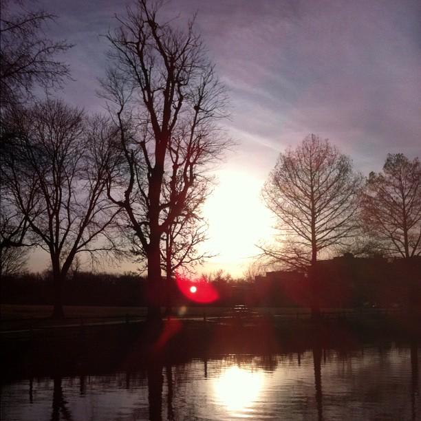 como+sunset.jpg