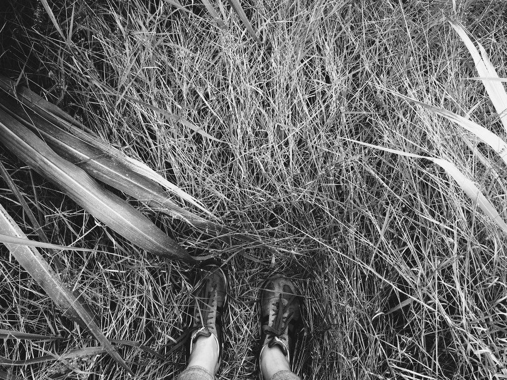 BW Feet Standing In Grass.jpg