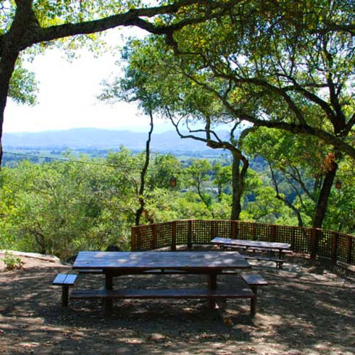 Rutherford Hill Winery picnic area