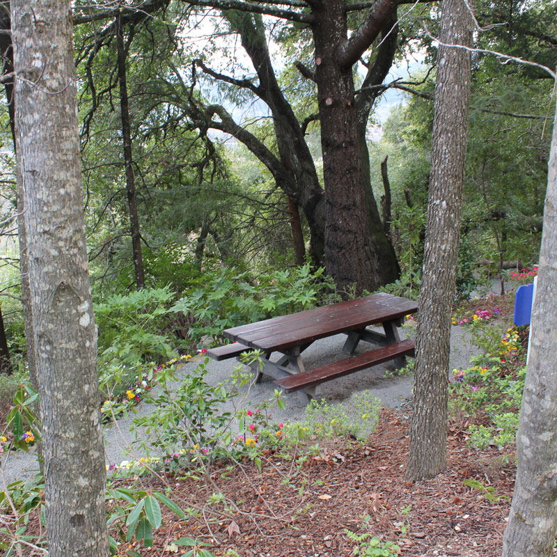 Secluded picnic area at Rombauer Winery Napa