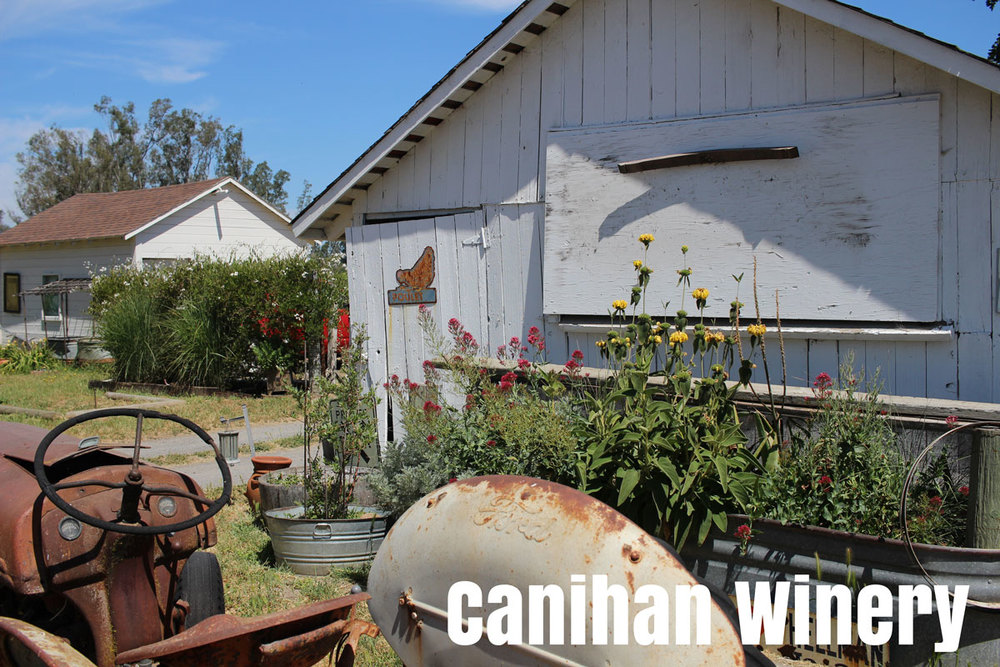 Canihan Winery near Sonoma