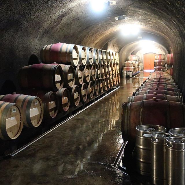 Is it just me or is the smell of barrels filled with wine deep in the caves the most wonderful thing?  @lmrwine @napavintners @prioritywinepass