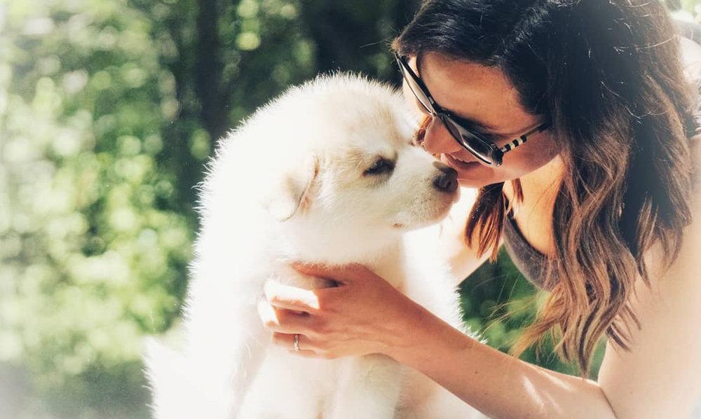 PupWellness.jpg