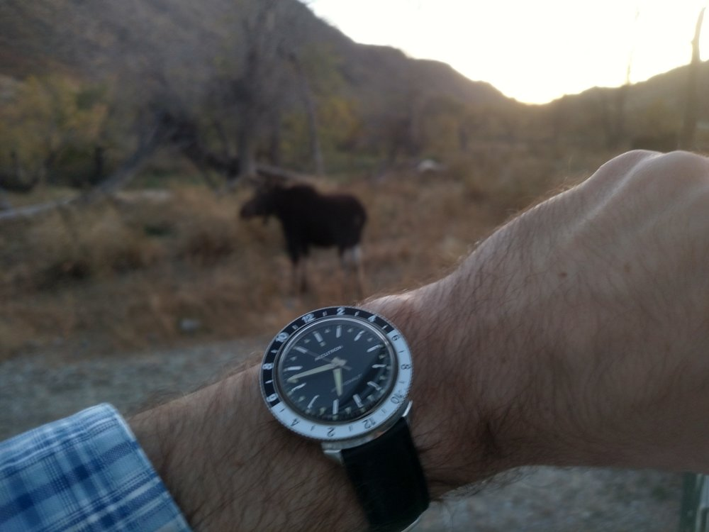 Moose-watching with this 1968 Bulova Accutron Astronaut  Northeast of Bosler, Wyoming