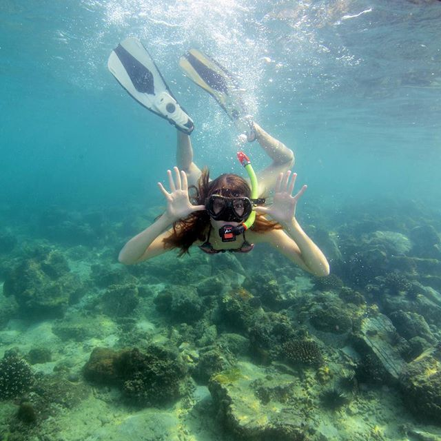 Day 215: Life is the bubbles under the sea. 🐠🎶 Today we went snorkeling around the Phi Phi Islands in Thailand. It was a sunny day, so the visibility was fantastic. Spent the afternoon with Nemo, Dory, Flounder, Sebastian, and Flotsam & Jetsam. Still looking for Ariel... Check out @expedia's stories for the highlights! #365daysoftravels